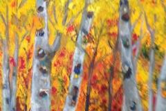 Aspen Fall, Acrylic (24 x 36)